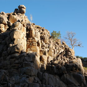 Dotted all over, granite outcrops or koppies have been shaped by weather for billions of years.