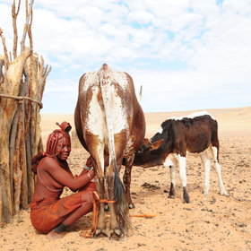 There may be opportunities to meet some of the local Himba people.
