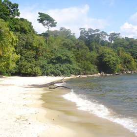 Rubundo Island has been uninhabited for decades and almost untouched by tourism.