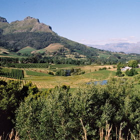 The Winelands around Stellenbosch, Paarl and Franschhoek...