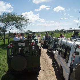 ... and parts of the park can be busy with visitors and their vehicles at times.