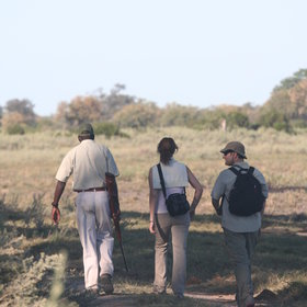 Some camps in the Okavango Delta offer walking safaris as an added activity ...