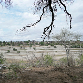 The west side of Makgadikgadi Pans National Park is bounded by the often-dry Boteti River ...