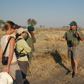Some of the camps offer guided walking which can be fascinating, and a chance ...