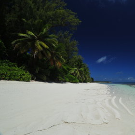 Desroches Island has 10 miles of coconut-fringed, white sandy beaches...