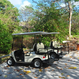 You can also explore the island with your own golf buggy...