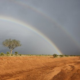 Wherever you go in Tsavo, the sky is huge…
