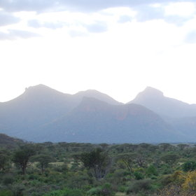 Namunyak Conservation Trust is a huge area of plains and mountains north of Samburu.