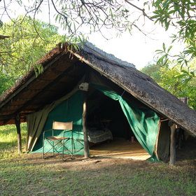 Shoebill Island Camp is a simple bushcamp with five walk-in tents…