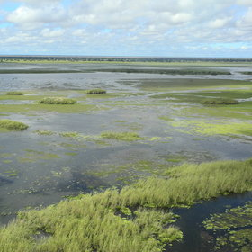 The Bangweulu Wetlands is a flooded wilderness…