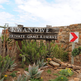 Kwandwe Private Game Reserve is situated in the Eastern Cape in South Africa, ...
