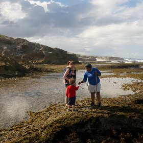 …and intertidal walks with a knowledgeable guide…