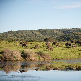 …and traversed by the Bushmans and Kariega rivers.