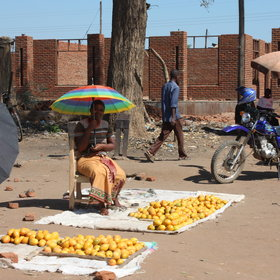 Lilongwe is a vibrant African city with roadside stalls...