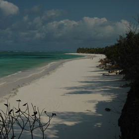The Michamvi Peninsula of Zanzibar is lined by a very large, long powder-white beach