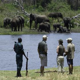... the reserve is good for walking safaris ...