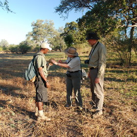For those in the know, Zambia remains the top destination for walking safaris.
