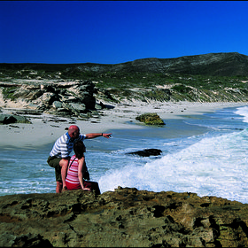 Explore the beautiful natural environment of the Garden Route…