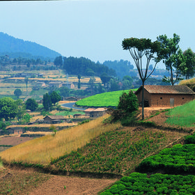 The rural areas of Rwanda are densely populated...