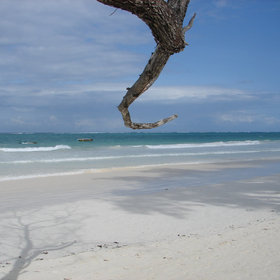 …and simply relax for a few days, for example here, at Diani Beach…