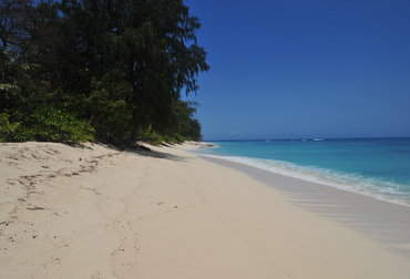 Superb private island beach holiday add-on to Denis Island, Seychelles