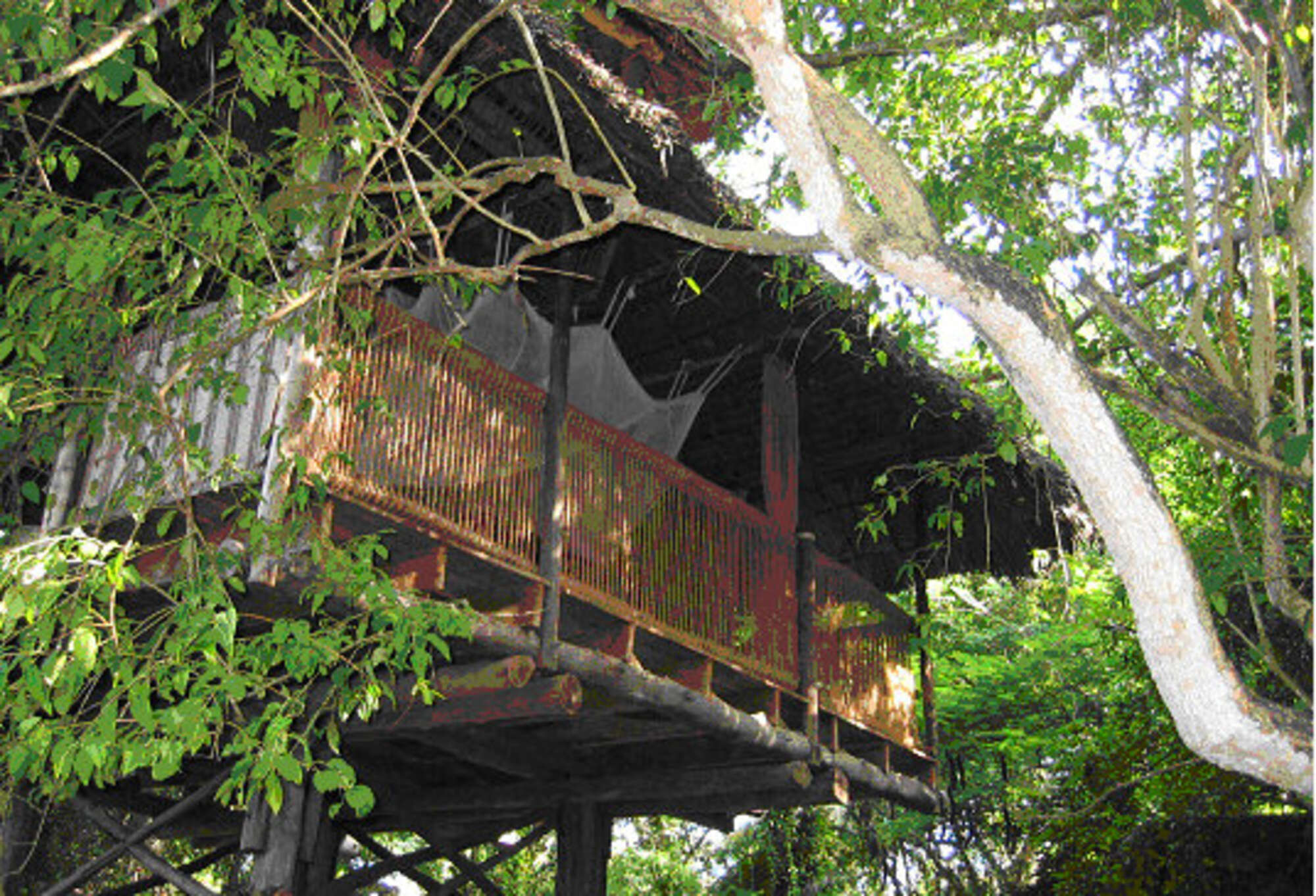 Chole Mjini Lodge - Pole Pole Lodge – Mafia Archipelago – Tanzania