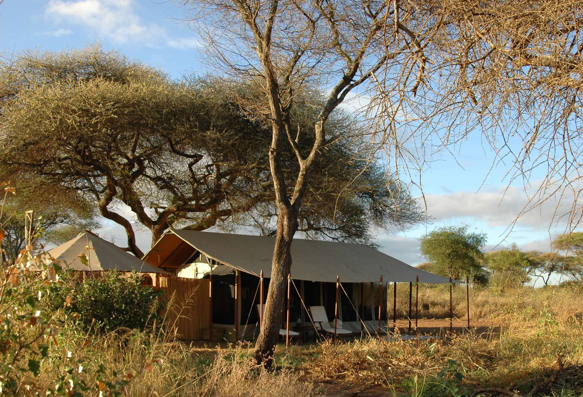 Safari holiday in northern Tanzania, including Oliver's Camp in Tarangire National Park, and Olakira and Sayari Camp in the Serengeti.