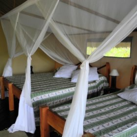 Inside the tents are simple, with twin-beds under mosquito nets, and a no-frills style...