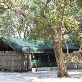 Matamanene Camp is situated in the heart of the Liuwa National Park.