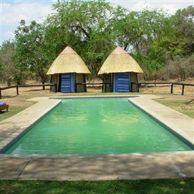 Unusual for camps in South Luangwa, Nkwali has a small swimming pool.