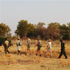 Walking safaris from Chikoko are led by an armed game scout and a professional guide