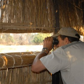 Other ways to spend your free time could be to visit one of Kaingo's photographic hides.