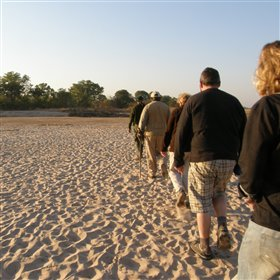 ... which usually concentrate on walking safaris.