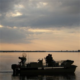 At Chiawa, activities include boat trips and fishing excursions...