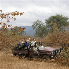 ...as well as guided day and night game drives