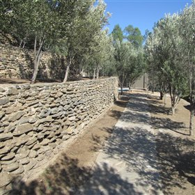 Cobbled walkways lead through terraced gardens dotted with olive trees and water features.