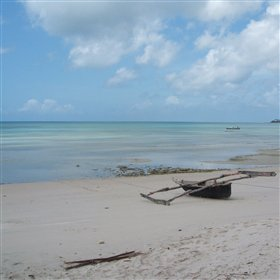 Visit one of the beautiful sandbars...