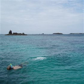 The snorkelling is also fantastic and arguably amongst the best in East Africa.