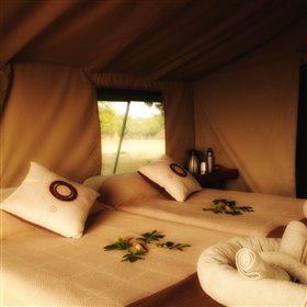 All of the tents are decorated in a classic style and are reminiscent of colonial safari camps