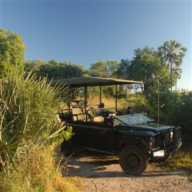 Activities focus on day and night game drives...