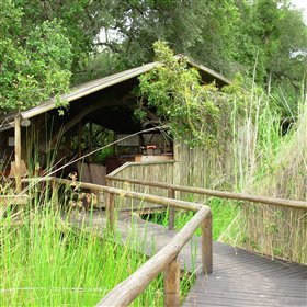 Little Vumbura is a small safari camp on its own private island in the Okavango Delta