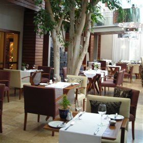 The courtyard restaurant is the main restaurant set in a covered courtyard with large trees