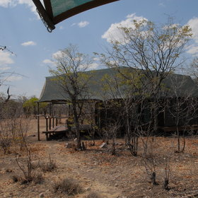 Ongava Tented Camp has more of a bush feel than other lodges...