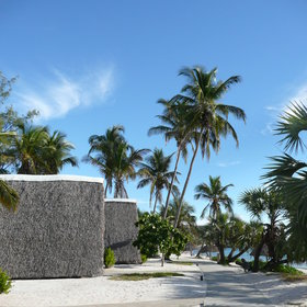 The chalets at Bazaruto Lodge are spaced out along a long palm-fringed beach.