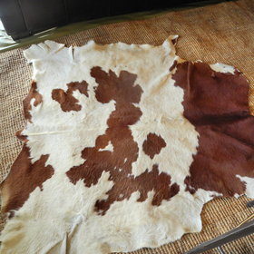 complete with cow skin rugs!