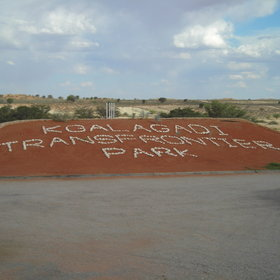 Twee Rivieren restcamp is at the southern entrance to the Kgalagadi Transfrontier Park.