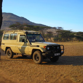 Activities focus on morning and afternoon 4x4 game drives...