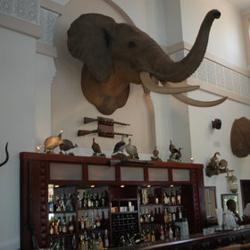 The Niassa Bar is uniquely decorated and offers all kinds of refreshing drinks