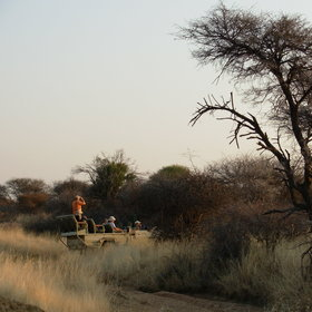 Activities at Okonjima include 4WD safari drives...
