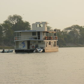 Whilst shipping along the Zambezi or Chobe River...